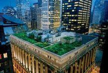 LA_Roof_top_屋顶花园