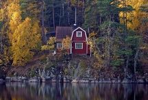 Sweden / This is to my heritage and the hope of traveling there one day  / by Nerys Gemmer