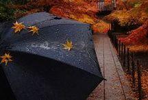 outono inverno