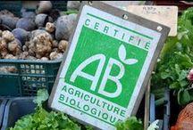Notre philosophie / L'Albert 1er est un hôtel indépendant et géré par la même famille depuis 1956. Nous avons mis en place de nombreuses démarches afin de contrôler l'impact de notre activité sur l'environnement : réduction des déchets, économie d'eau et d'énergie, produits locaux et issus de l'agriculture biologique... , par Hôtel Albert 1er Toulouse