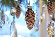 Making Christmas Memories / by Teresa Medley