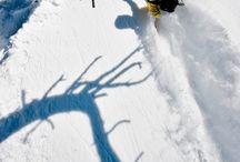 Winter's tale / Winter, skiing, Christmas