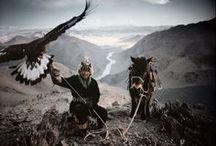 .nomadic & nature.