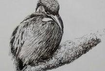 Drawing / ! / by Marisete Facchini Girardello
