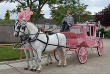FAYTON ( HORSE CARRIAGE )