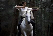 Career alternatives for ponies / Mounted archery, falconry, and what ever else my vertically challenged horse might like...