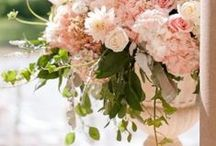 PINK ROSES, PEONIES AND DAHLIAS