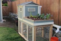 Farming in the Suburbs / Backyard farm, mini farm, raising chickens, urban farming ideas, small pet farming.