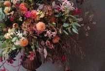 COTSWOLD FLOWER SCHOOL / Flower workshops for the creative soul, working on large or small arrangements, the usual to the unusual.   Inspired by nature and based in the heart of the country - The Cotswolds