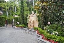 ★Italian/mediterranean garden Inspiration / by ~♥~M u r i e l ~♥~