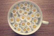 · flower power ·