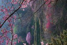 Scenic Places