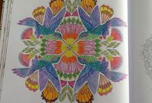 Colouring In For Adults