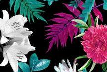 Flowers (-print)