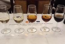 """VINOS DE MONTILLA-MORILES / En este tablero podrás encontrar imágenes de los vinos que se elaboran y crían en las bodegas de las Denominaciones de Origen """"Montilla-Moriles"""" y """"Vinagre de Montilla-Moriles"""""""