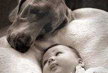 Pets Love Children