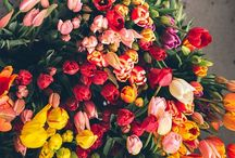 Flowers .