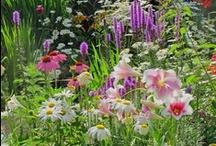 Decor: Gardens / I love my garden.