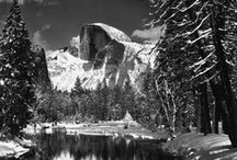 Ansel Adams / Ansel Easton Adams (February 20, 1902 - April 22, 1984)  was one of the 20th century's great nature photographers. Through his camera and outspoken conservation efforts, he brought the plight of national parks to the consciousness of the U.S. His iconic black-and-white images helped to establish photography among the fine arts.  / by Suzanne Hoffman