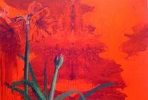 OEFENafbeeldingen Beeldaspect Kleur per A