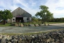 Event Spaces / The Sea View Vineyard is a breathtaking space surrounded by the vines and a sweeping water view.  The Sakonnet Barn is a beautifully unique and eclectic space with a true modern feel.  The Tasting Room is a rustic space with a large bar and beautiful barn doors.  (Available November-April)