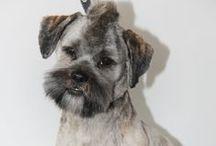 Pet - grooming / Komercyjne strzyżenie pupili