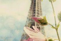 PARIS / by Anis GC