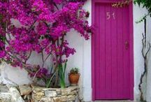 Doors & Gates / Colors of Doors from all over the World