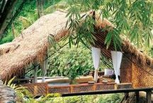 Tree Houses / Structure built in the branches of a tree for children to play in.