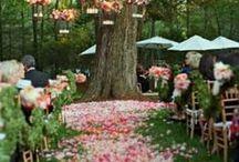 Location & Wedding ideas