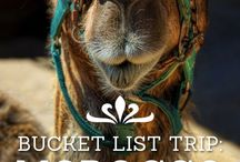 Maroko / Foto a poznavanie