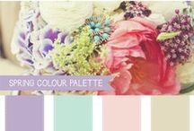 Wedding colour palletes / With so many beautiful colours to choose from, what is a girl to do?!   .. let the colour pallette do the work for you.. that's what! / by Brett and Mel Photography