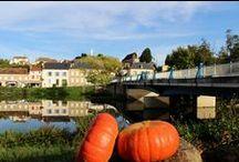 Des citrouilles à Cercy / Prises de vues réalisées cet automne 2013