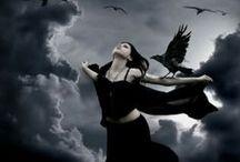 Black Bird Omens / Black is my happy colour