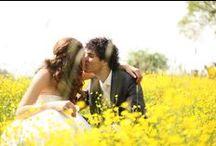 Trouwfoto's van Kim / De allermooiste (vind ik) trouwfoto's van Kim Cuhfus. www.kimcuhfusbruidsfotografie.nl