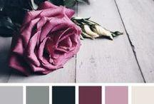 Leggere i colori