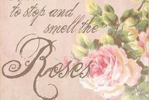 Stop to smell the Roses / Pretty little things
