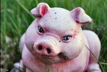 Animals - I love Piggies / OINK ! #pigs #piglet #swine / by Sandra Glover