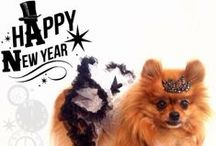 New Years Eve Pomeranians   / Adorable little glitzy silver and black tutu dresses made just for Pomeranians!  #pomeranian #newyears