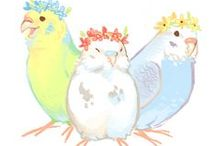 Art of Budgies / Illustration,pictures,art,Painting 鳥(セキセイインコ)のイラストです。