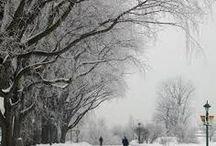 winter ☔