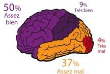 """Santé / Toutes les infographies """"Santé"""" publiées par TNS Sofres."""