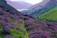 Vacation destinations - scotland