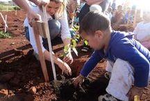 Dia de reflorestamento / Reflorestamento realizado pela Richter Gruppe e Crianças da Escola Infantil Primeiros Passos no Loteamento Comercial e Indústrial Lajeado. O evento teve o assessoramento da Lógica Gestão Ambiental e a presença de autoridades municipais.