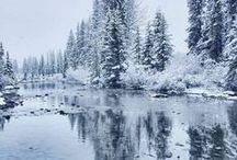 Iced Earth / Sanki Buzul Bir Dünya...