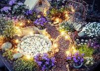 In the Garden - Fairy Gardens & Gnome Homes