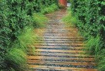 In the Garden - Greenhouses & Garden Paths