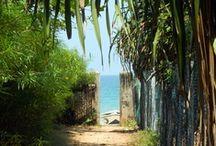 Sri Lanka / Sri Lanka is een schitterend eiland met een groen binnenland, eeuwenoude steden, gouden stranden en een zeer vriendelijke bevolking.