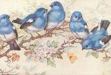 Little Birds / Cute little birds.
