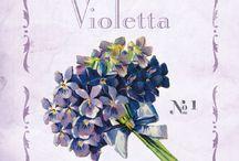 Violetta / Violetta